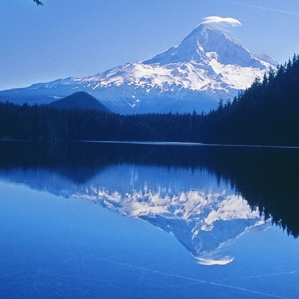 Mt. Hood Wilderness Legislation Moves Through the Senate