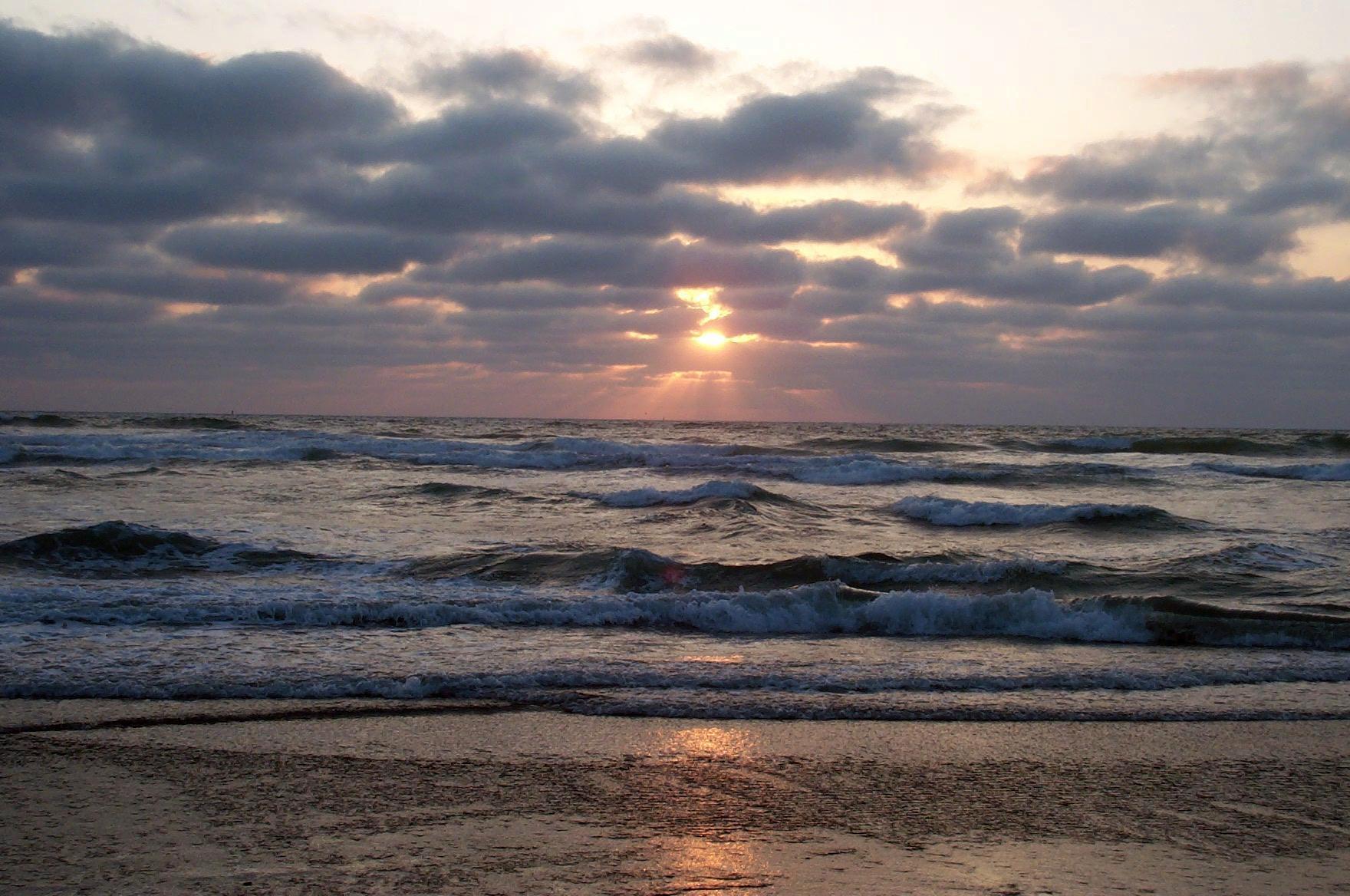 Oregon Shores: 40 Years of Protecting Oregon's Coast