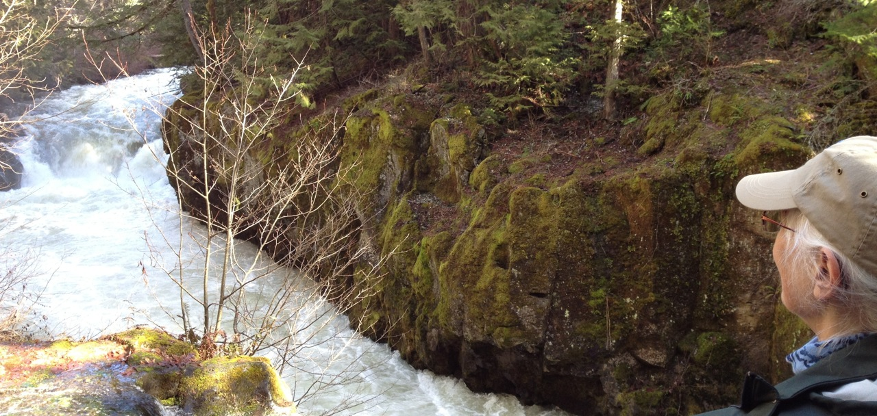 White Salmon River Valley Water Threatened