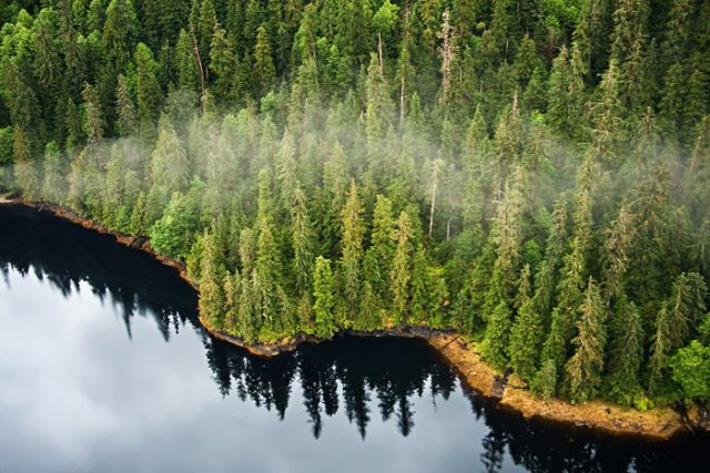 Crag Case Protects Tongass National Forest