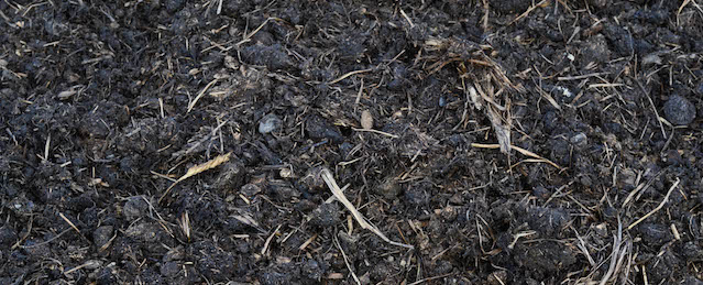 Judge Closes Loophole that Permitted Contaminated Compost in Organic Production