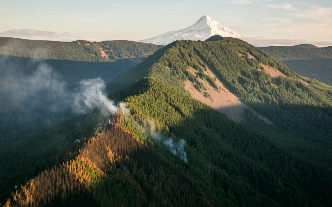 Climate, Forests and the Eagle Creek Fire