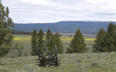Crag Protects Sensitive Riparian Habitat in the Ochoco National Forest