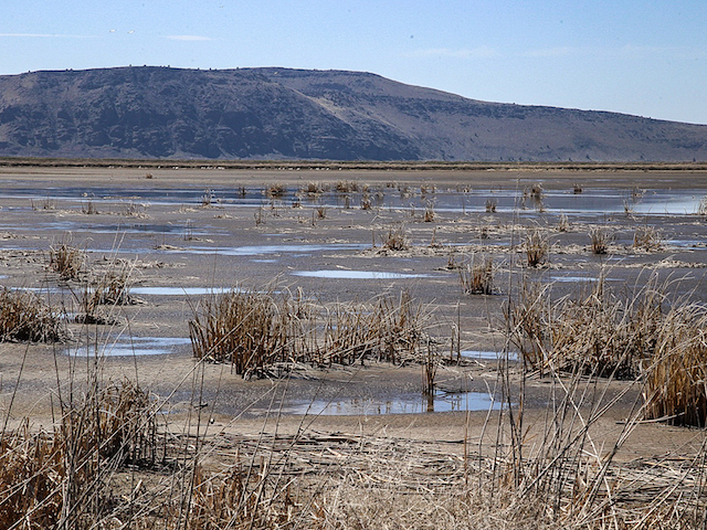 Dried up wetlands in the Klamath Wildlife Refuge
