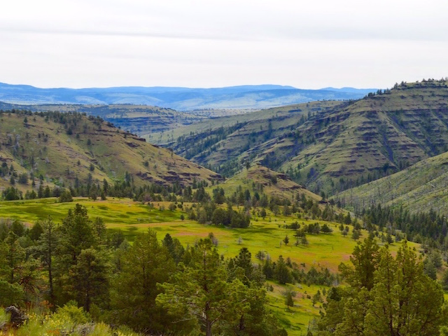 Central Oregon Wild Lands Protected!