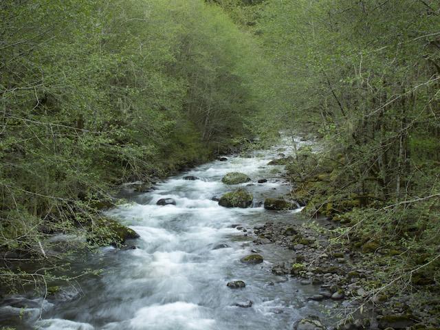 Molalla Wastewater Treatment Plant Violations