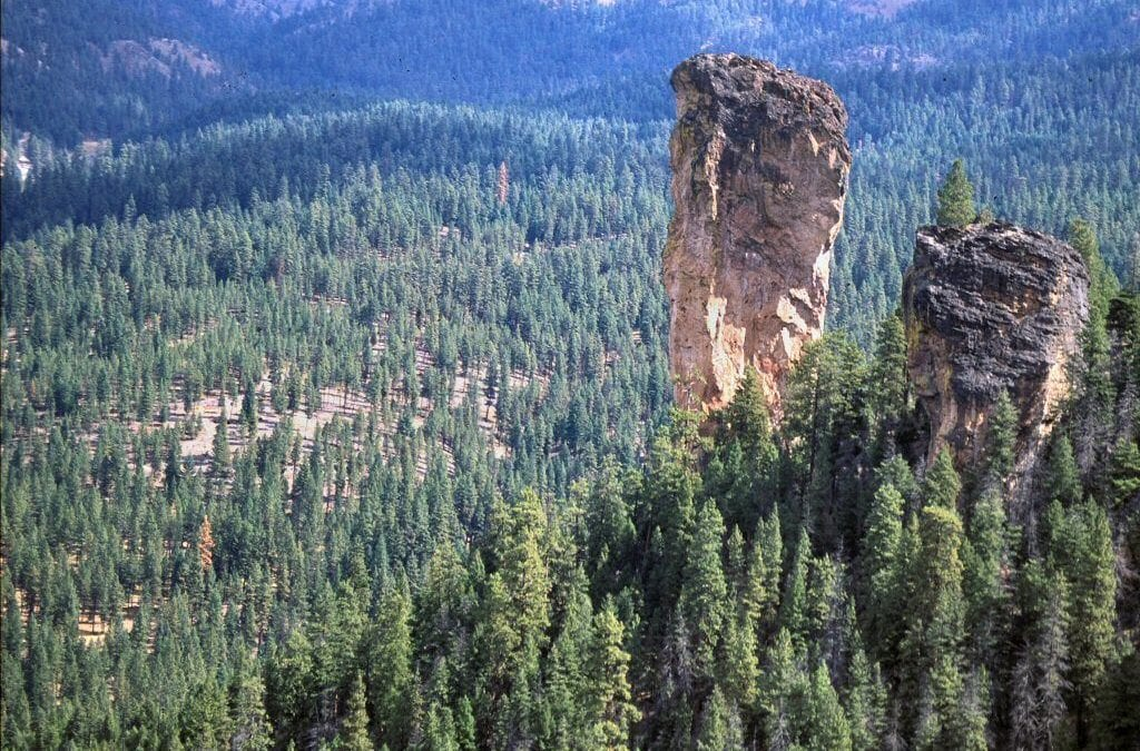 Victory for the Beautiful Ochoco National Forest