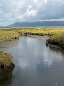 Skipanon estuary