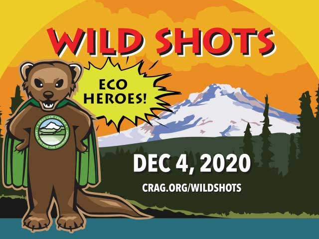 Wild Shots 2020 – Friday, December 4