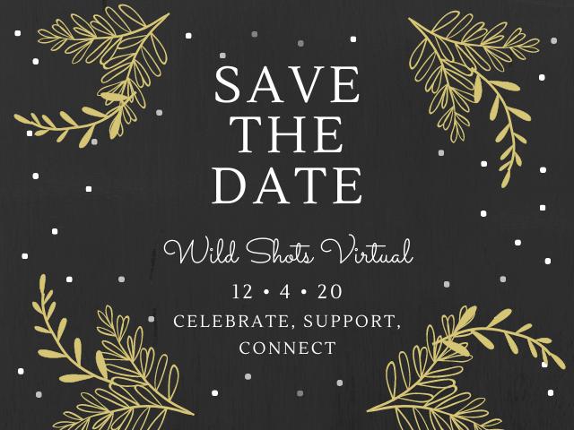 Wild Shots 2020 – Friday, December 4