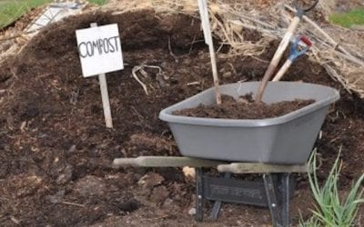 Crag Secures a Ban on Pesticides in Compost Used in Organic Food Production