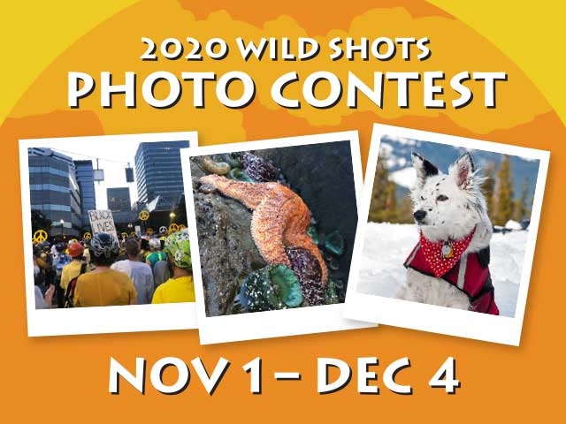 Wild Shots Photo Contest