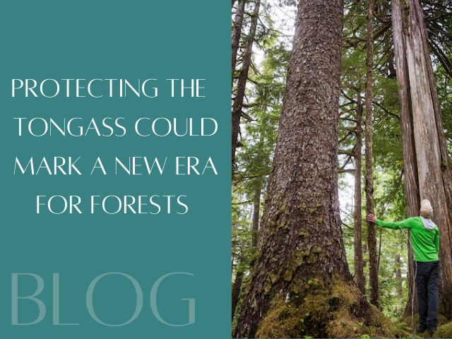Protections for Tongass National Forest Spark Hope
