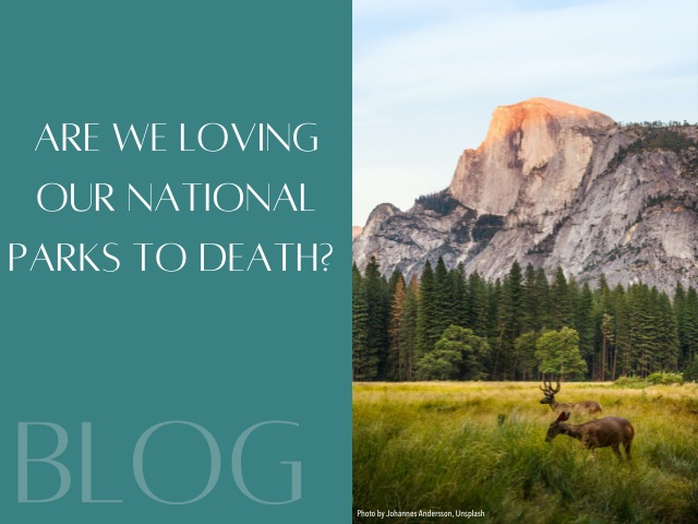 Increasing Tourism Threatens National Parks' Stability