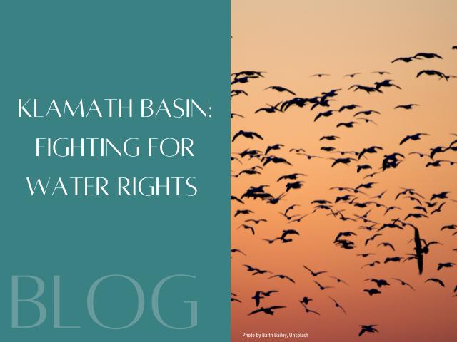 The Ambo Fund: Saving Sacred Fish in the Klamath Basin